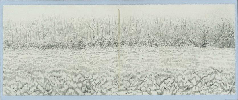 fieldtrees