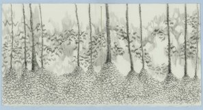 treemounds