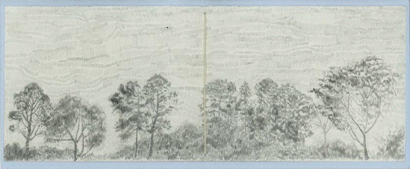 treeskyline